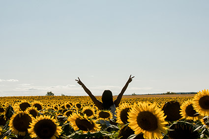 Dr. Ali in sunflowers