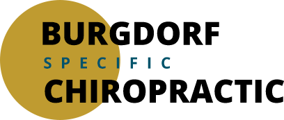 Burgdorf Specific Chiropractic logo - Home