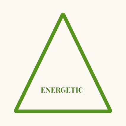 energetic model