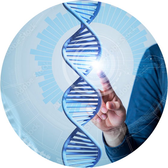 Person touching DNA strand illustration