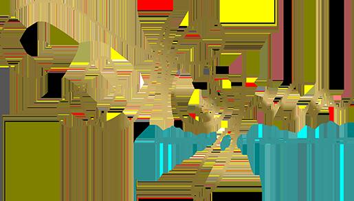 Mojica Chiropractic Care logo - Home