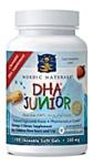 DHA Junior