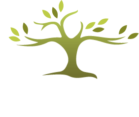 Wood Chiropractic Center logo - Home