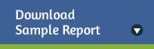 sample report download