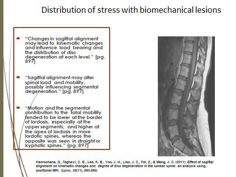 distribution-of-stress