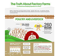 Truth About Factory Farms Infographic