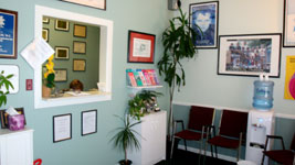 Welcome to Frosch Family Chiropractic