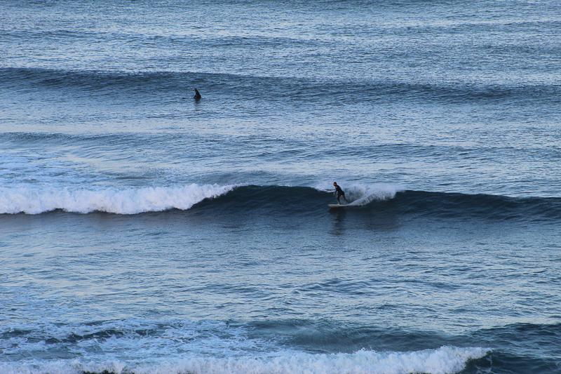 Point Loma - Ken Swaim, 02/28/21
