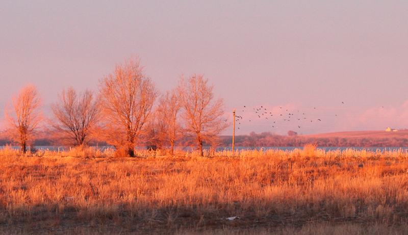 Sunrise on Trees Lake Lowell, Ken Swaim 01-10-21