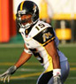 Tad Kornegay: Hamilton Tiger Cats (CFL), Fordham University, Defensive Back