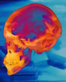 Colorful photo of a human skull