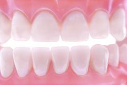 Perfect set of teeth