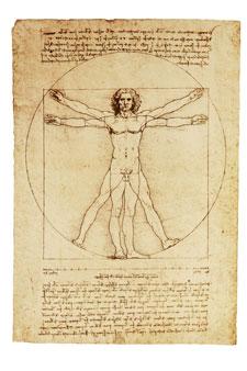 Dr Vinci sketch