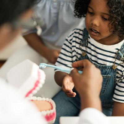 Dentist showing little girl how to brush
