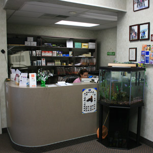 Welcome to Woodbury Family Chiropractic