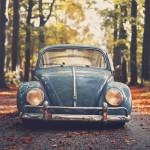 Bug Car