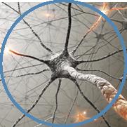Mandeville BrainCore Therapy