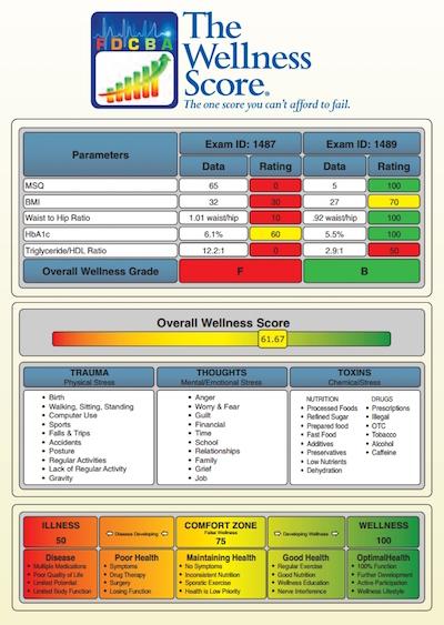 chiro-life-wellness-score