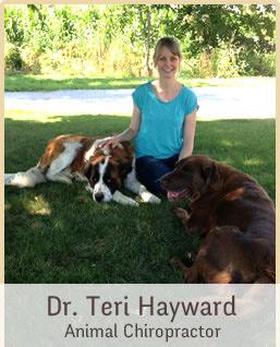 Dr. Teri Hayward