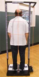 Free Spinal Check