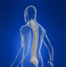 Appleton Chiropractic, Why Choose Chiropractic