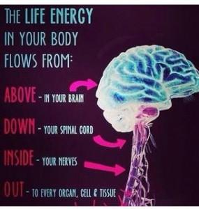 The life energy