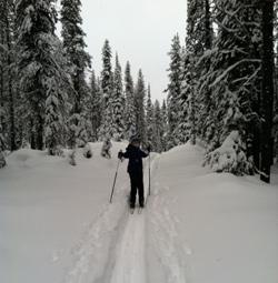Dr. Lynn skiing