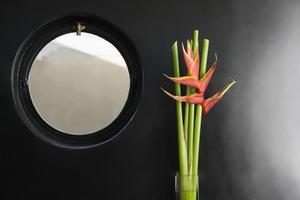 PalosChiro-Birdofparadiseflowerandporthole