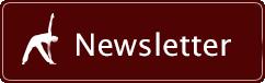 newsletter-sans