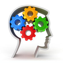 braincore