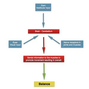 balance-image