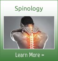 Spinology