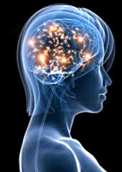 Orange County Neurofeedback