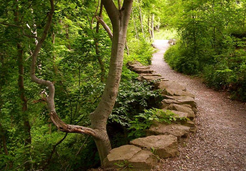 Frick Park Walking Trail