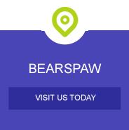 bearspaw