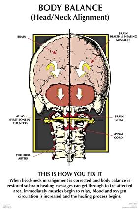 NUCCA Chiropractor