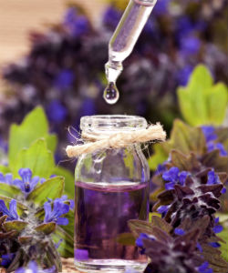 {PJ} Chiropractor Dr. Bach Flower Remedies