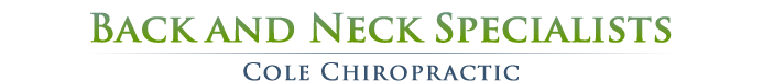Back and Neck Specialists logo - Home