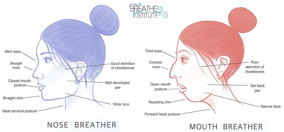 Breathe Institute Diagram