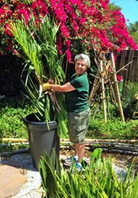Billie gardening