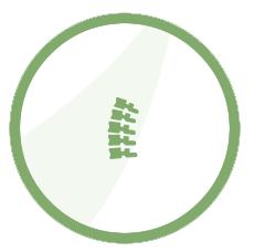 chiropractic-circle