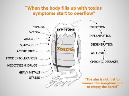 Chiropractor Aberdeen Toxins