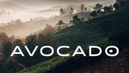 avocado-mattress