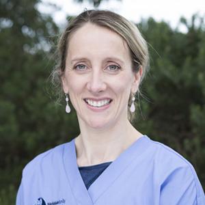 Dentist Parkdale Dr Suzanne Cairns