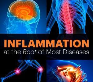 InflammationArticleMemev2