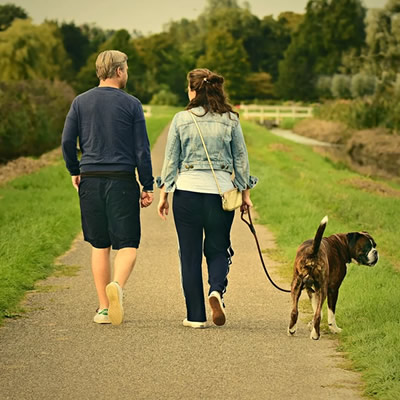 Couple walking the dog in the park