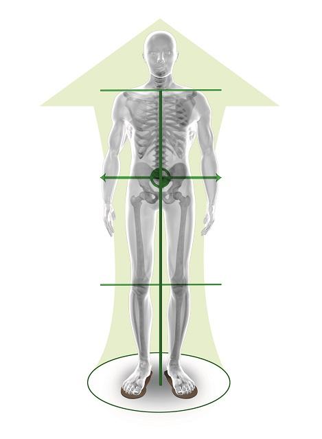balanced-bioman