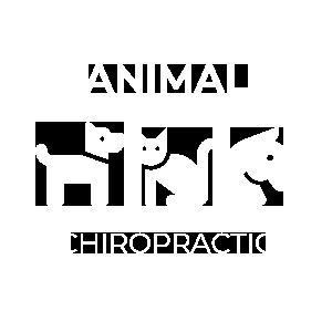 animal chiropractic