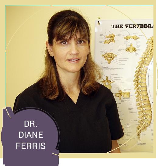 Get to know Dr. Diane Ferris