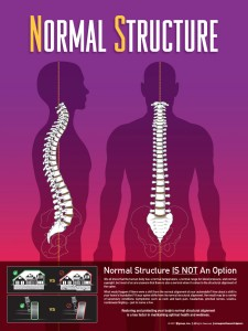 normal-structure-web1